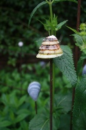 Garden plant supports Shell sticks Wick Hutton Objets trouve